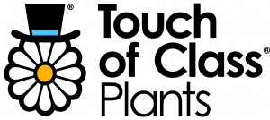 Touch of Class - Logo